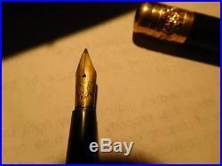 Vintage Parker Lucky Curve Pen with original box